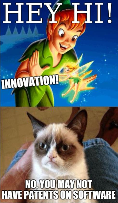 Grumpy Cat Does Not Believe: HEY HI! INNOVATION! No, you may not have patents on software