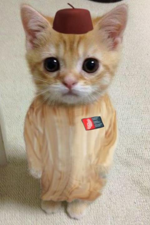 EPO cat