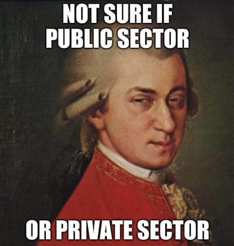 Mozart Not Sure if public sector or private sector